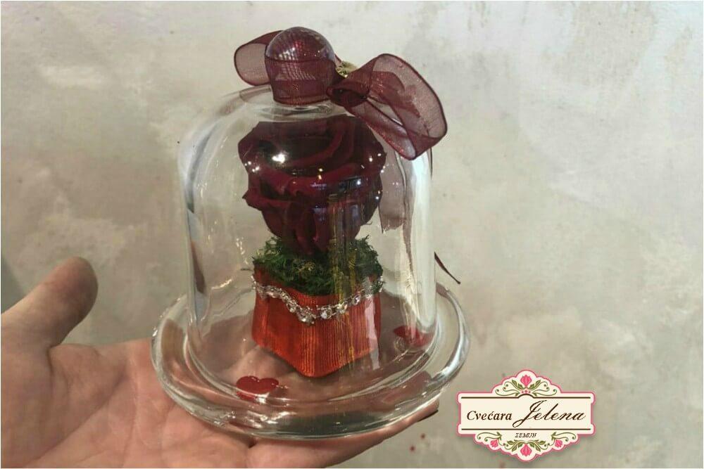 Mini zvono sa dehidriranom ružom