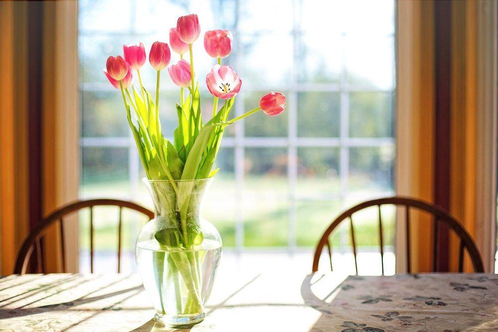 Da cveće duže traje, Cvećara Jelena