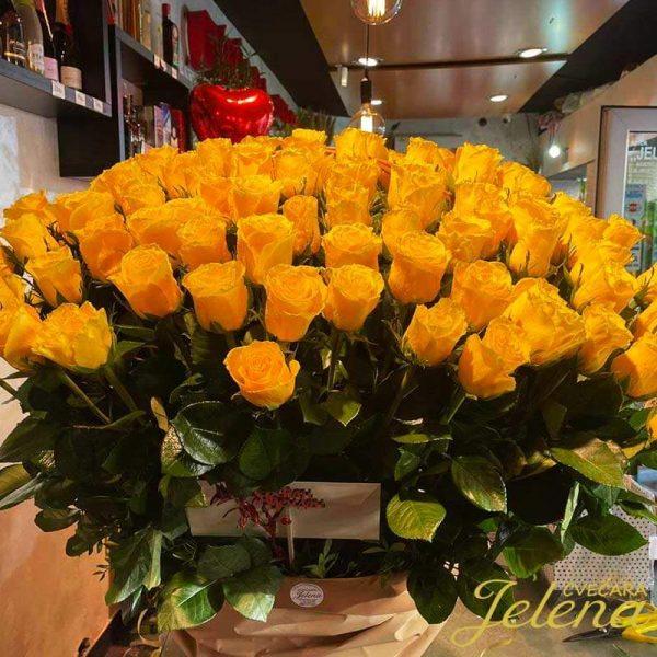101 žuta ruža